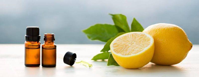 Tinh dầu xông phòng. Tinh dầu chanh giúp cho cơ thể loại bỏ độc tố