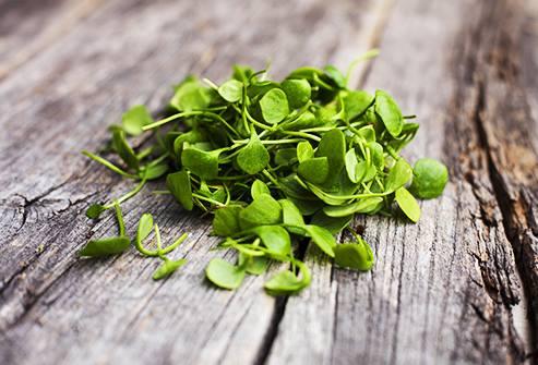 Rau bổ dưỡng tốt cho sức khỏe - Cải xoong giàu chất chống oxy hóa